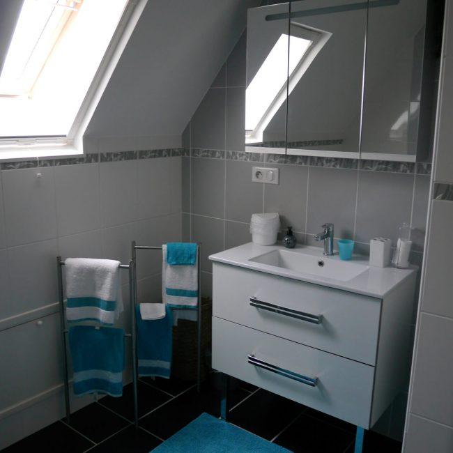 blauwe kamer badkamer 002