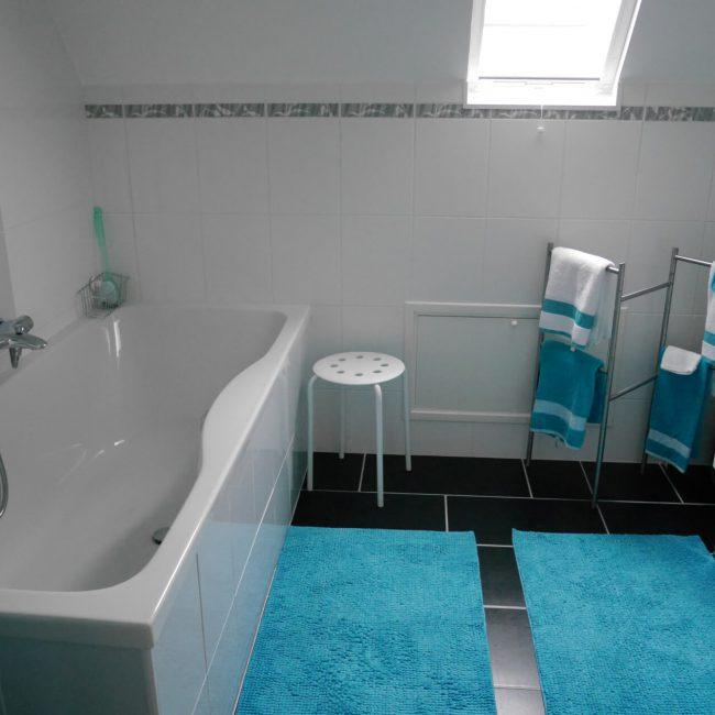 blauwe kamer badkmamer 001